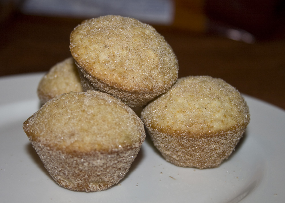 Cinnamon Sugar Doughnut Muffins | Bakerlady