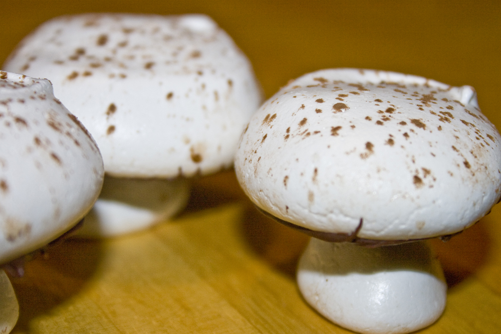 Meringue Mushrooms01