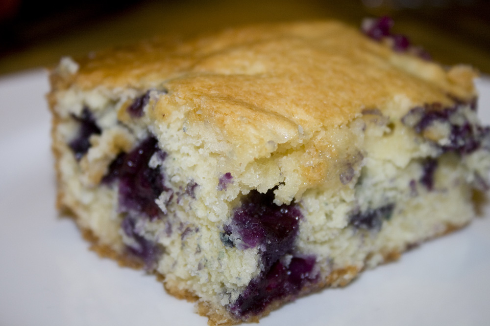Blueberry Cake | Bakerlady