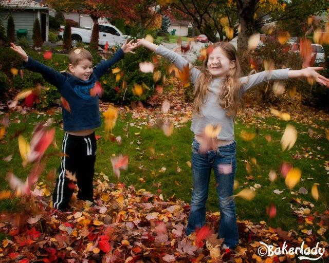 Autumn Amazingness - Bakerlady