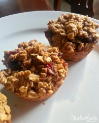 Oatmeal to go Pumpkin Cranberry Muffins - Bakerlady